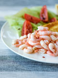Tasty Shrimp Sandwich. With some tomatoes in the background and salad and bread Stock Photography