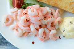 Tasty Shrimp Sandwich. With some tomatoes in the background and salad and bread Royalty Free Stock Images
