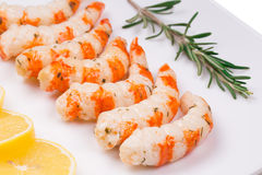 Tasty shrimps with lime. Royalty Free Stock Photo