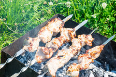 Tasty skewers on charcoal in the summer outdoors stock images