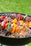 Tasty skewers on the grill Royalty Free Stock Images