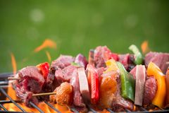 Tasty skewers on the grill Royalty Free Stock Image