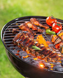Tasty skewers on the grill. Stock Images