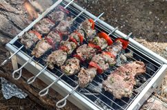 Tasty skewers and steack on grill with vegetables. Tasty skewers on the grill with vegetables on grill Royalty Free Stock Image