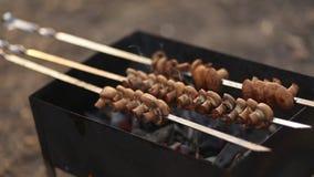Tasty skewers of mushrooms grilled mushrooms in nature. stock video