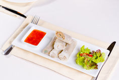 Tasty Sliced Spring Rolls with Lettuce and Sauce Royalty Free Stock Photos