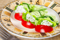 Tasty snack: lettuce stuffed with cheese Stock Photos