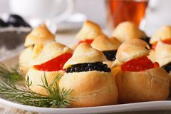 Tasty snack: profiteroles stuffed with red and black caviar Royalty Free Stock Photos