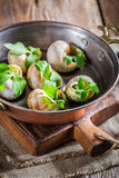 Tasty snails with garlic butter and parsley Stock Image