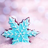 Tasty snowflake shaped cookie Stock Images