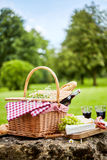 Tasty spring picnic lunch with red wine. Baguette, assorted cheese, grapes and spicy sausages with a wicker hamper and checked cloth on a rock in a park Royalty Free Stock Image