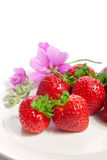 Tasty strawberries Royalty Free Stock Photography