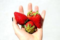 Tasty strawberries isolated on white background stock photo