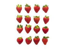 Tasty strawberries on white background. Four row of tasty strawberries on white background Royalty Free Stock Photo