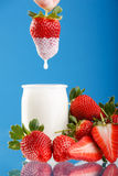 Tasty strawberries and yogurt. Fresh and tasty strawberries and yogurt Stock Image