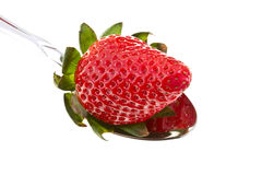 Tasty strawberry Stock Photo