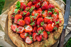 Tasty strawberry pie in garden Royalty Free Stock Photography