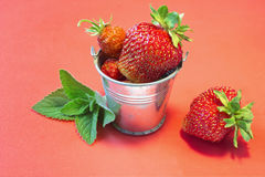Tasty strawberry. In a small bucket on a red background Royalty Free Stock Image