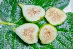 Tasty Sweet Honey Fig Stock Photography