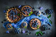 Tasty and sweet tarts made of brown cream and berries Stock Photos