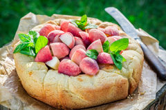 Tasty tart with peaches in sunny day Royalty Free Stock Photo