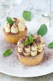 Tasty Tiramisu Cupcakes royalty free stock photos