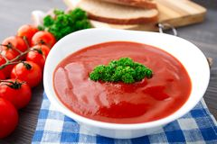Tasty tomato soup with herbs Stock Photos