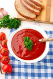 Tasty tomato soup with herbs Royalty Free Stock Images