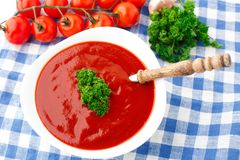 Tasty tomato soup with herbs Stock Photography