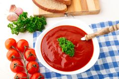 Tasty tomato soup with herbs Royalty Free Stock Photos