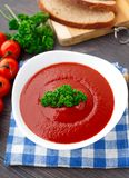 Tasty tomato soup with herbs Stock Image