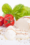 Tasty tomatoe mozzarella salad with basil on white Royalty Free Stock Photos