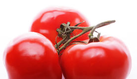 Tasty tomatoes Stock Images