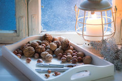 Tasty and Tough hazelnuts and walnuts for Christmas Stock Photos