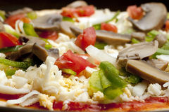 Tasty vegetable pizza Stock Images