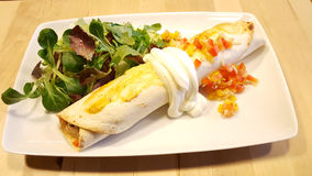Tasty vegetables burrito restaurant photography