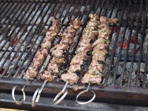 Tasty Venison Kabobs Royalty Free Stock Image