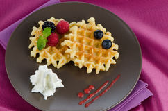 Tasty waffle with fruits Stock Images