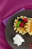 Tasty waffle with fruits Stock Photos