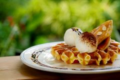 Tasty waffle and vanilla ice cream set served with banana sugar coating Topped with chocolate sauce on white plate in green garden Stock Photography