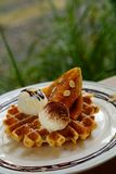 Tasty waffle and vanilla ice cream set served with banana sugar coating Topped with chocolate sauce on white plate in green garden Royalty Free Stock Photography