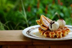 Tasty waffle and vanilla ice cream set served with banana sugar coating Topped with chocolate sauce on white plate in green garden Stock Image