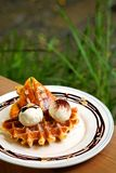 Tasty waffle and vanilla ice cream set served with banana sugar coating Topped with chocolate sauce on white plate in green garden Stock Images
