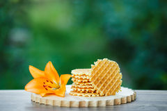 Tasty waffles on wooden board with background of green bokeh. Belgian waffles with fresh berries on cutting board on background of green bokeh Stock Photography