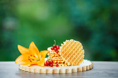 Tasty waffles on wooden board with background of green bokeh. Belgian waffles with fresh berries on cutting board on background of green bokeh. grapefruit juice Royalty Free Stock Images