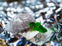 Tasty white candy in the form of ball with powder from coco with mint leaves. A relief background from a foil. Patches of light. Tasty white candy in the form of royalty free stock photography