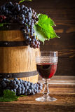 Tasty wine in glass and grapes on barrel Royalty Free Stock Photo