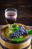 Tasty wine in glass with grapes Royalty Free Stock Image