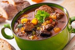 Tasty winter hot pot stew Royalty Free Stock Image