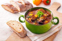 Tasty winter stew Royalty Free Stock Photo